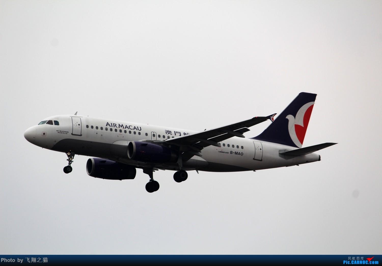 Re:[原创]2015CKG春运最后的疯狂 AIRBUS A319 B-MAO 重庆江北国际机场