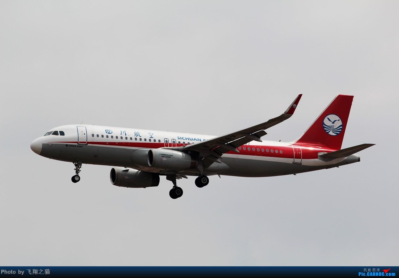 Re:[原创]2015春游CKG(山航慈祥父母.奥凯十年纪念.恩施彩绘) AIRBUS A320-200  重庆江北国际机场