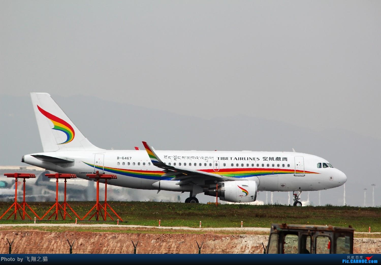 Re:[原创]2015春游CKG(山航慈祥父母.奥凯十年纪念.恩施彩绘) AIRBUS A319 B-6467 中国重庆江北国际机场