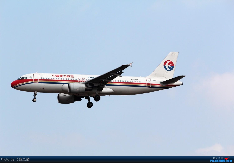 Re:[原创]2015春游CKG(山航慈祥父母.奥凯十年纪念.恩施彩绘) AIRBUS A320-200 B-6803 中国重庆江北国际机场