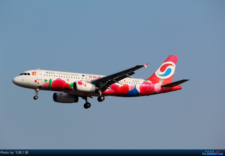 Re:[原创]2015春游CKG(山航慈祥父母.奥凯十年纪念.恩施彩绘) AIRBUS A320-200 B-6576 中国重庆江北国际机场