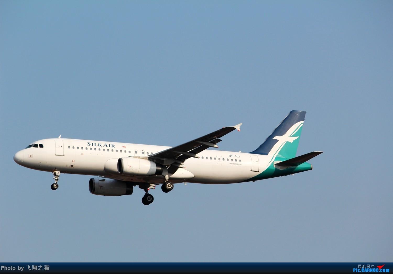Re:[原创]2015春游CKG(山航慈祥父母.奥凯十年纪念.恩施彩绘) AIRBUS A320-200 9V-SLF 中国重庆江北国际机场