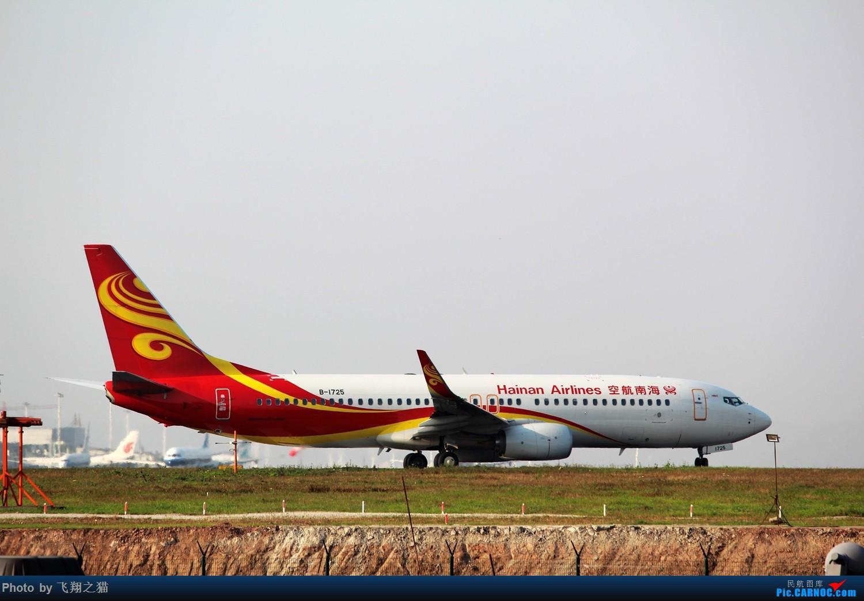 Re:[原创]2015春游CKG(山航慈祥父母.奥凯十年纪念.恩施彩绘) BOEING 737-800 B-1725 中国重庆江北国际机场