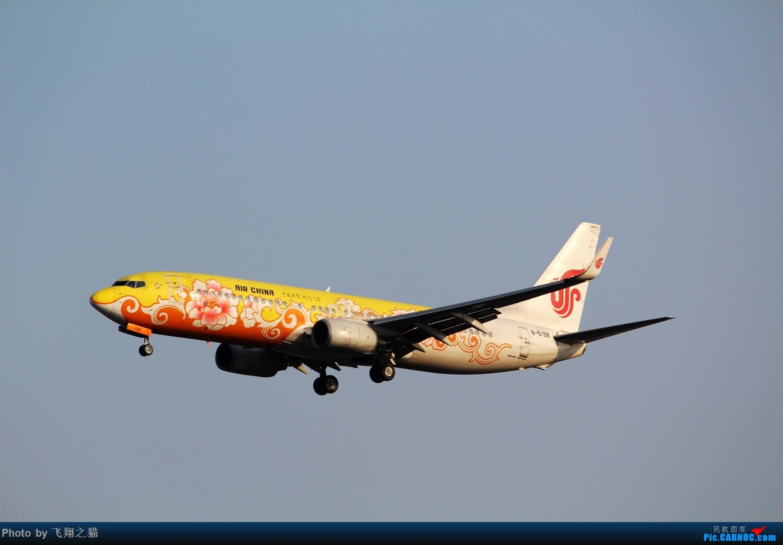 Re:[原创]2015春游CKG(山航慈祥父母.奥凯十年纪念.恩施彩绘) BOEING 737-800 B-5198 中国重庆江北国际机场