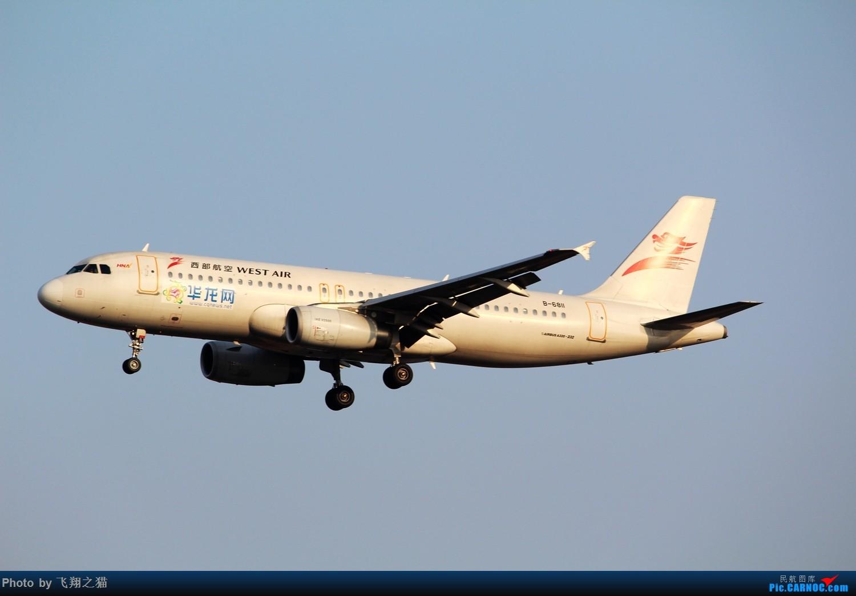 Re:[原创]2015春游CKG(山航慈祥父母.奥凯十年纪念.恩施彩绘) AIRBUS A320-200 B-6811 中国重庆江北国际机场