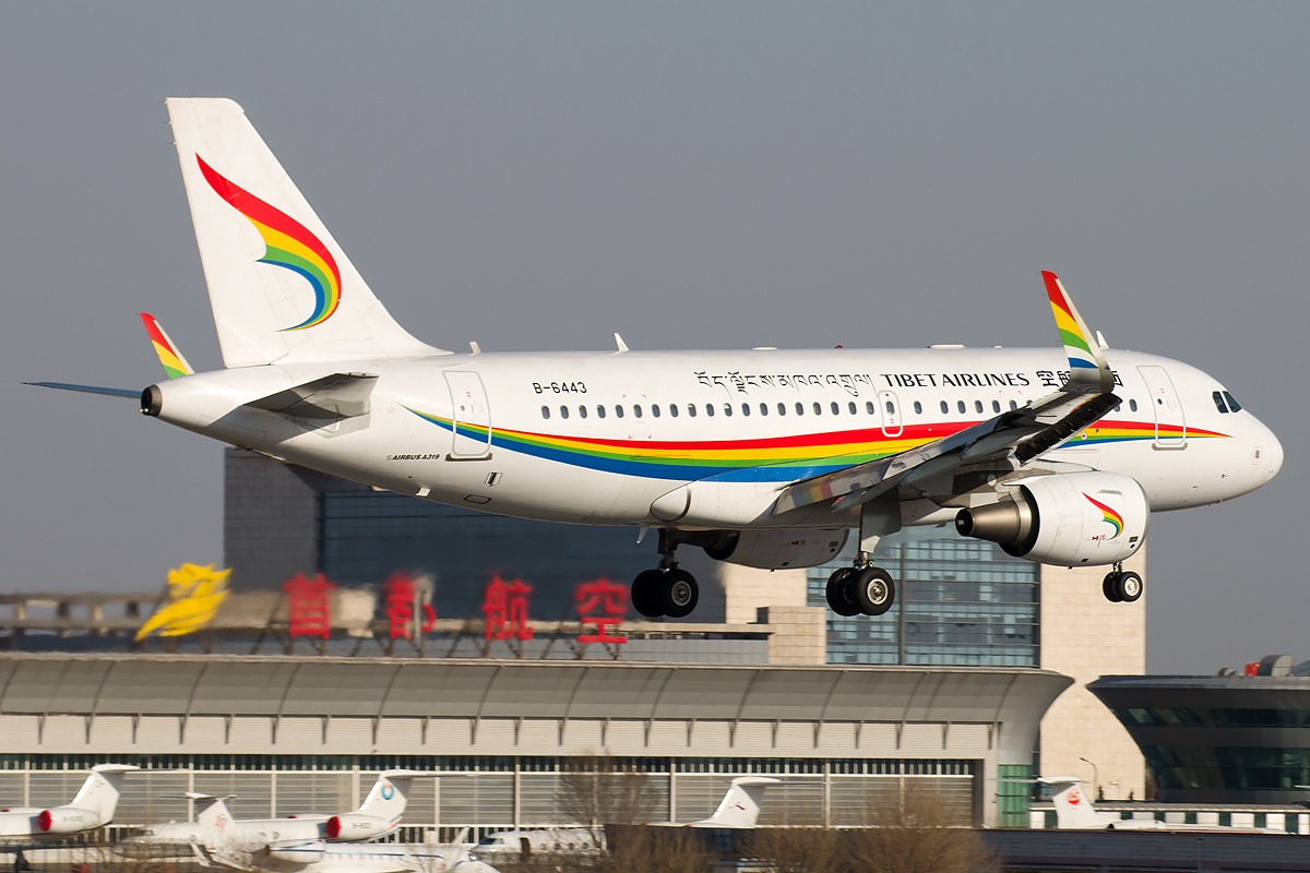 Re:[原创]土堆越来越低了,树却越来越高了,擦烟位没了,就剩下两个树间的空隙可以拍了... AIRBUS A319-100 B-6443 中国北京首都国际机场