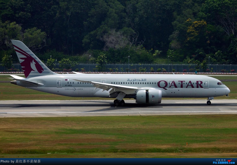 Re:[原创]【红茶拍机】新加坡樟宜拍机,duang都是国内少见货色! BOEING 787-8 A7-BCL 新加坡樟宜机场
