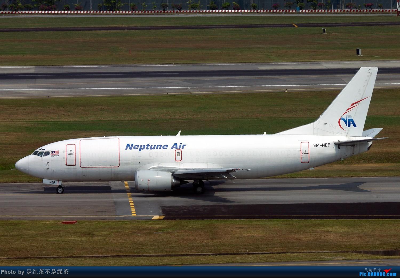 Re:[原创]【红茶拍机】新加坡樟宜拍机,duang都是国内少见货色! BOEING 737-300F 9M-LNM 新加坡樟宜机场