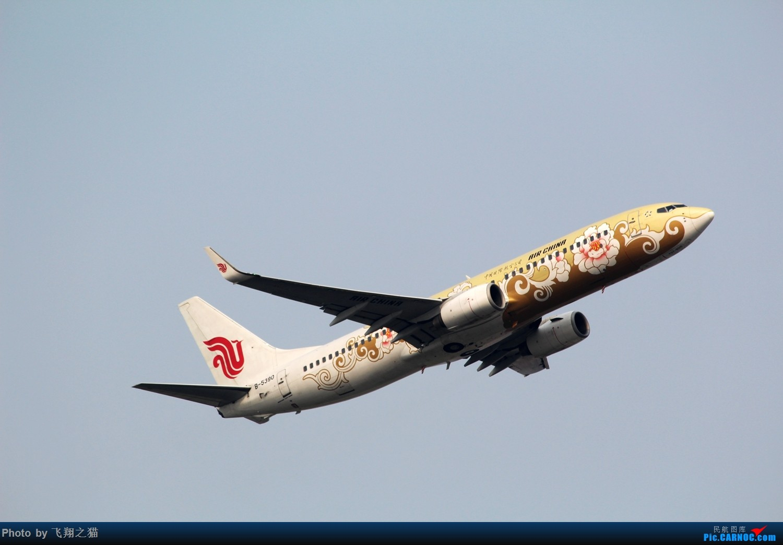 Re:[原创]2015CKG起飞系列图集锦 BOEING 737-800 B-5390 重庆江北国际机场