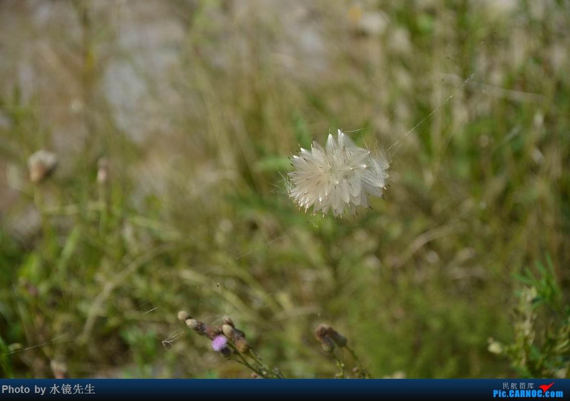 Re:[原创]水镜先生新版游记[2014年08月][第085集04部]横贯吉林:从湖光到山色