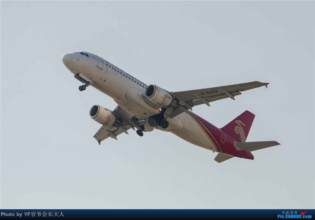 Re:[原创]时隔近半年再来桃仙,收下不少好货 AIRBUS A320-200 B-6566 中国沈阳桃仙国际机场