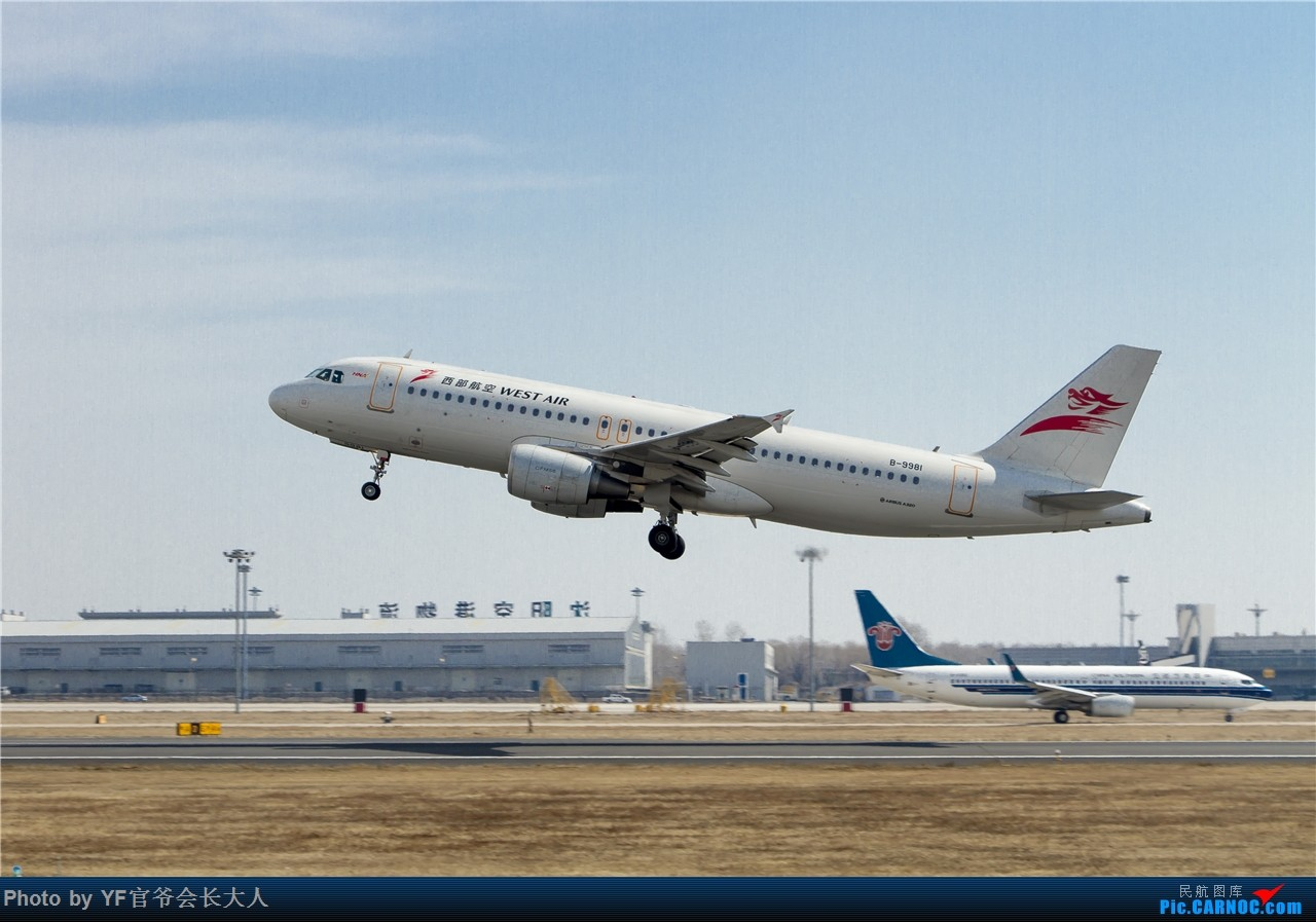 Re:[原创]时隔近半年再来桃仙,收下不少好货 AIRBUS A320-200 B-9981 中国沈阳桃仙国际机场