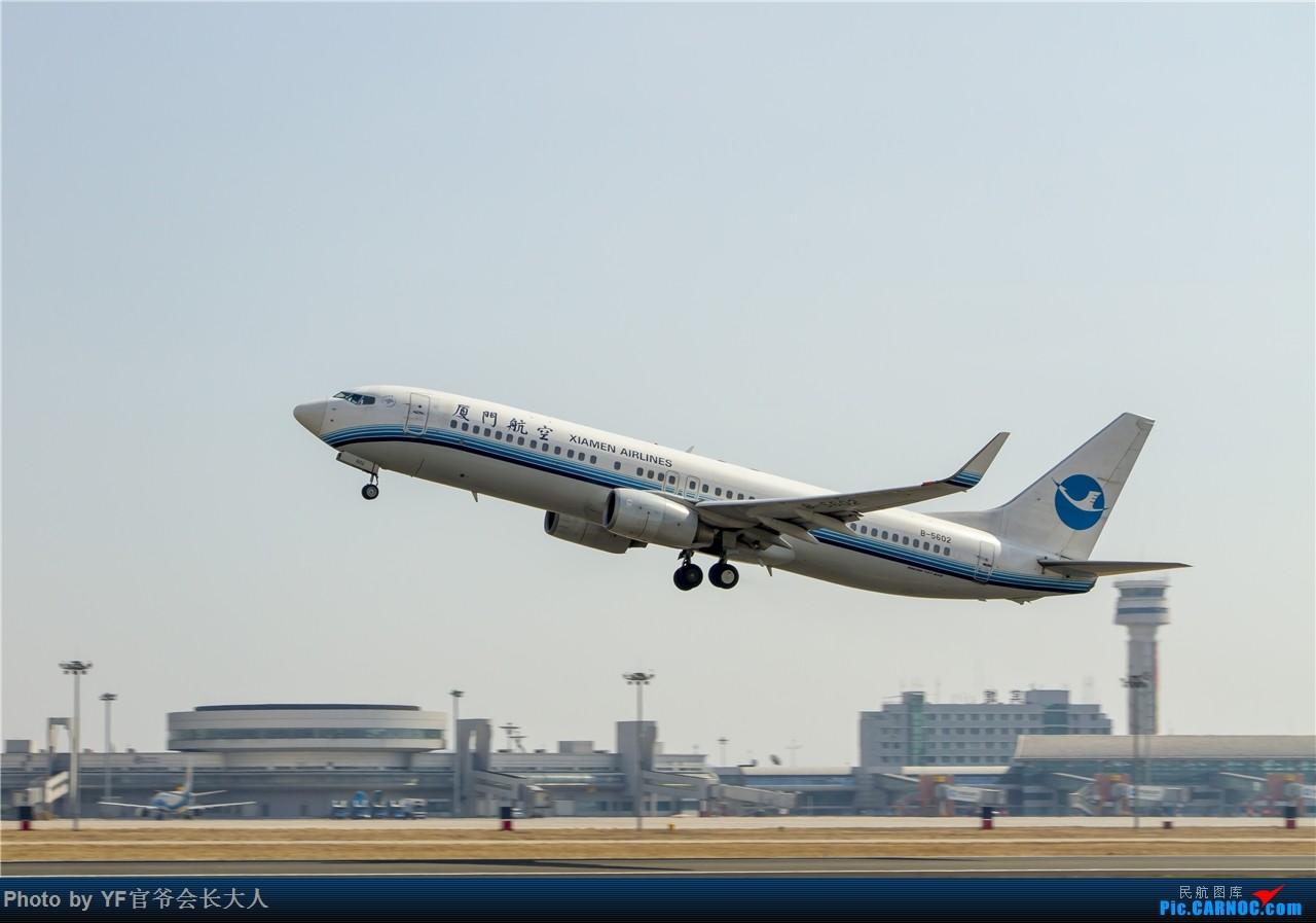 Re:[原创]时隔近半年再来桃仙,收下不少好货 BOEING 737-800 B-5602 中国沈阳桃仙国际机场