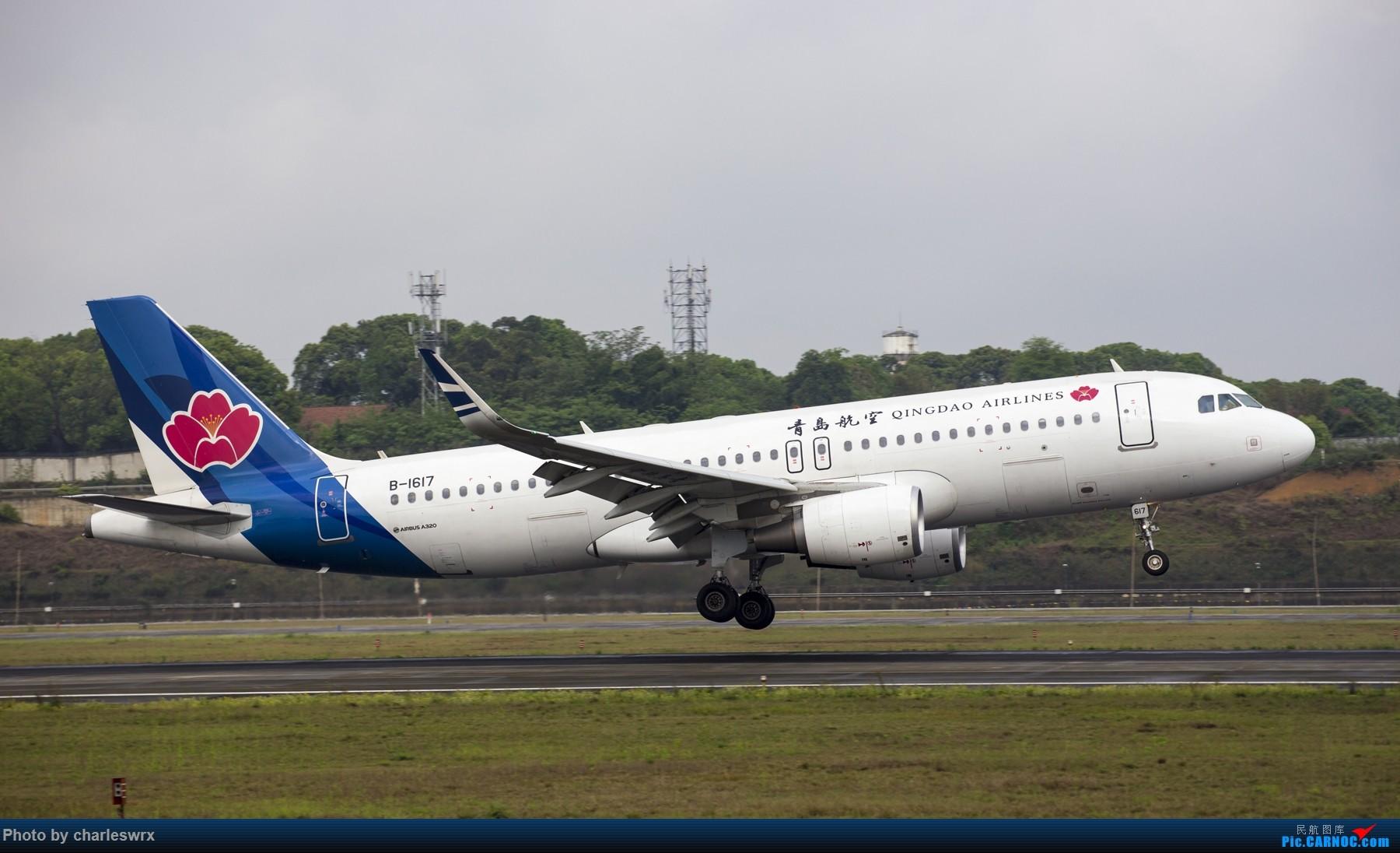 [原创]4.5清明小假的CTU【拍了一天机,多图!肿菊插队乱入。。。更新结束】 AIRBUS A320-200 B-1617 中国成都双流国际机场