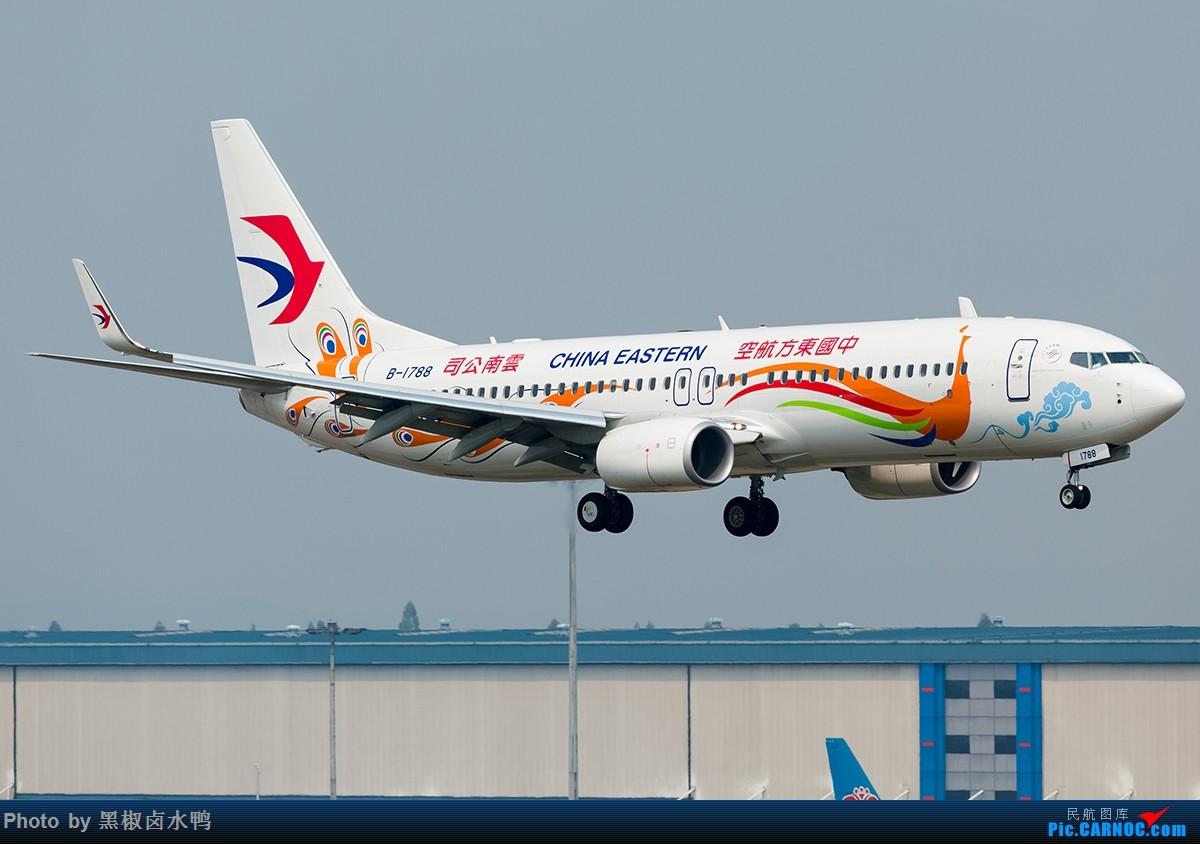Re:[原创]清明假期广州西跑鬼屋作业,发一贴 BOEING 737-800 B-1788 中国广州白云国际机场