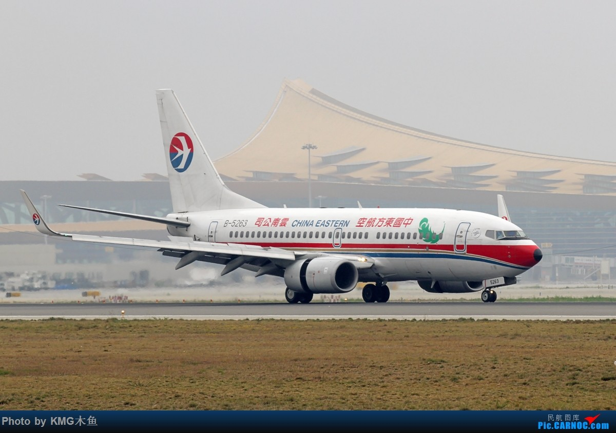 Re:[原创]【KMG】【昆明长水国际机场】烂天有好货在昆明同样适用 BOEING 737-700 B-5263 中国昆明长水国际机场机场