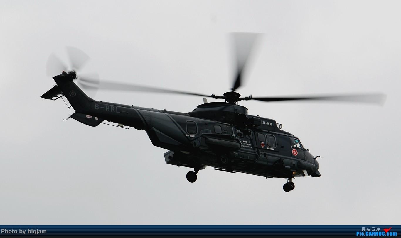 Re:[原创]香港三日闲游,外加沙螺湾和香港机场T2观景台拍机游记,众多PEK看不到的货。(持续更新中) 直升机 B-HRL 中国香港赤鱲角国际机场
