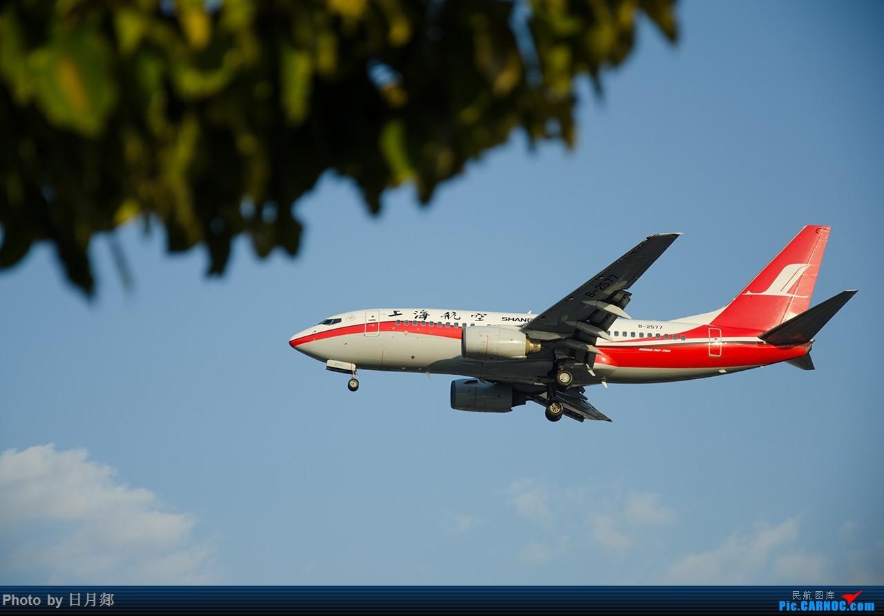 Re:[原创]首次发图,虹桥杂图,二月的某一个好天气 BOEING 737-700 B-2577 中国上海虹桥国际机场