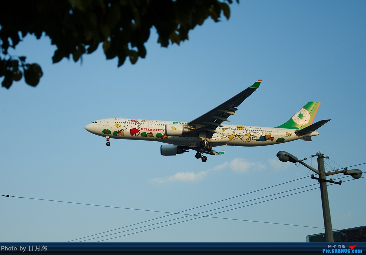 Re:[原创]首次发图,虹桥杂图,二月的某一个好天气 AIRBUS A330-300 B-16331 中国上海虹桥国际机场
