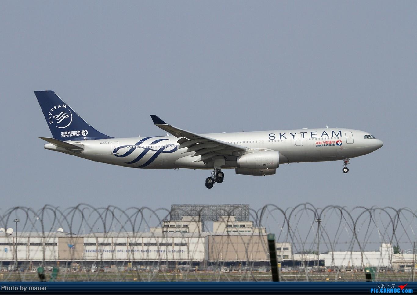 Re:[原创]【福州飞友会】第一次PVG拍机 满足! AIRBUS A330-200 B-5949