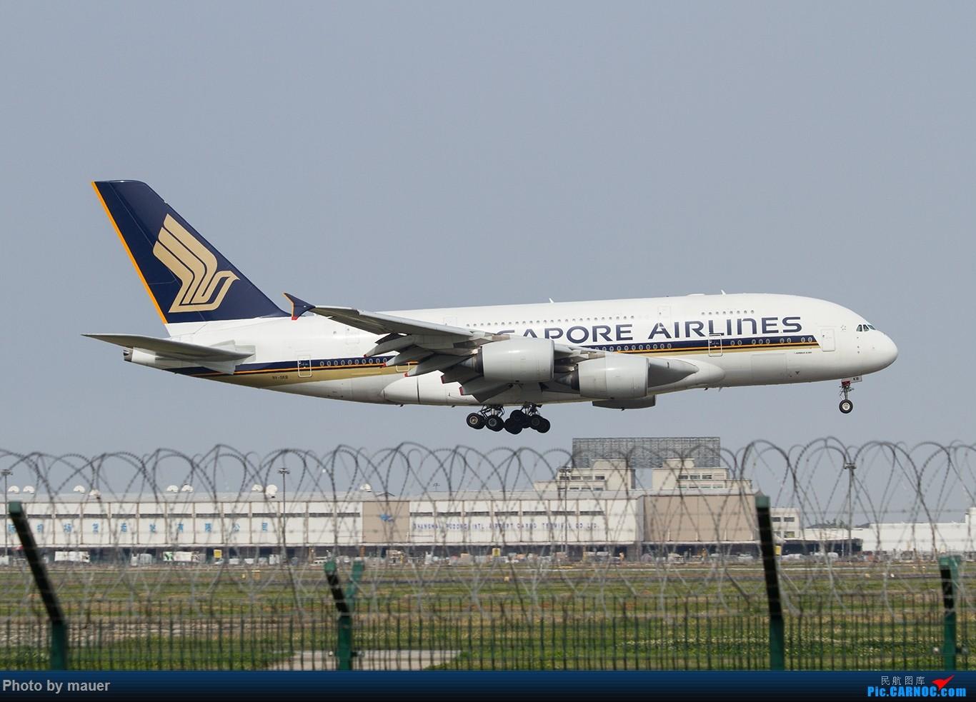 Re:[原创]【福州飞友会】第一次PVG拍机 满足! AIRBUS A380 9V-SKB PVG