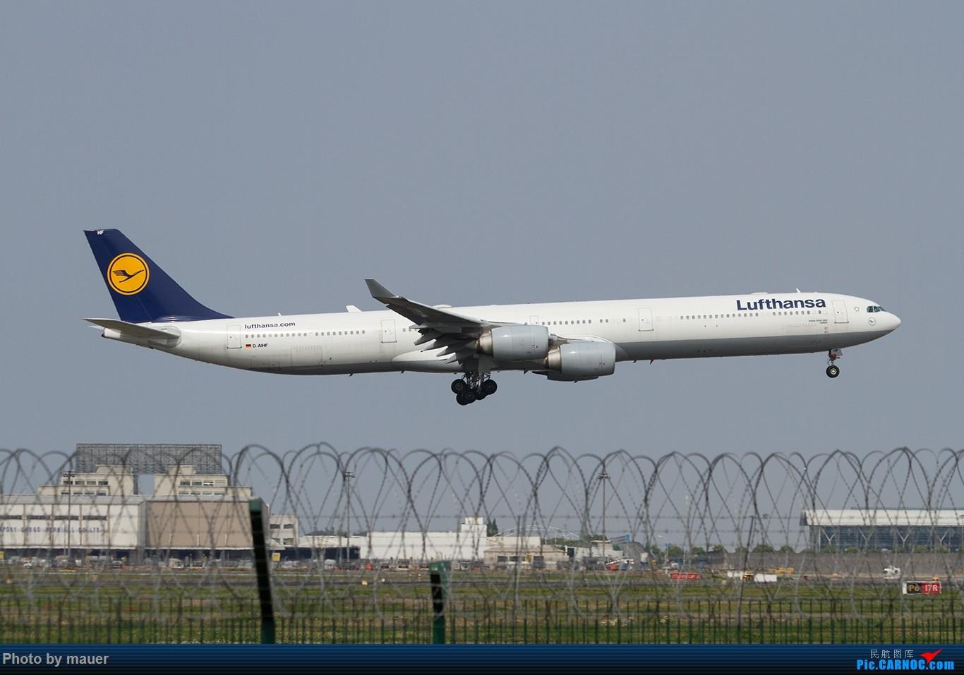Re:[原创]【福州飞友会】第一次PVG拍机 满足! AIRBUS A340-600 D-AIHF PVG