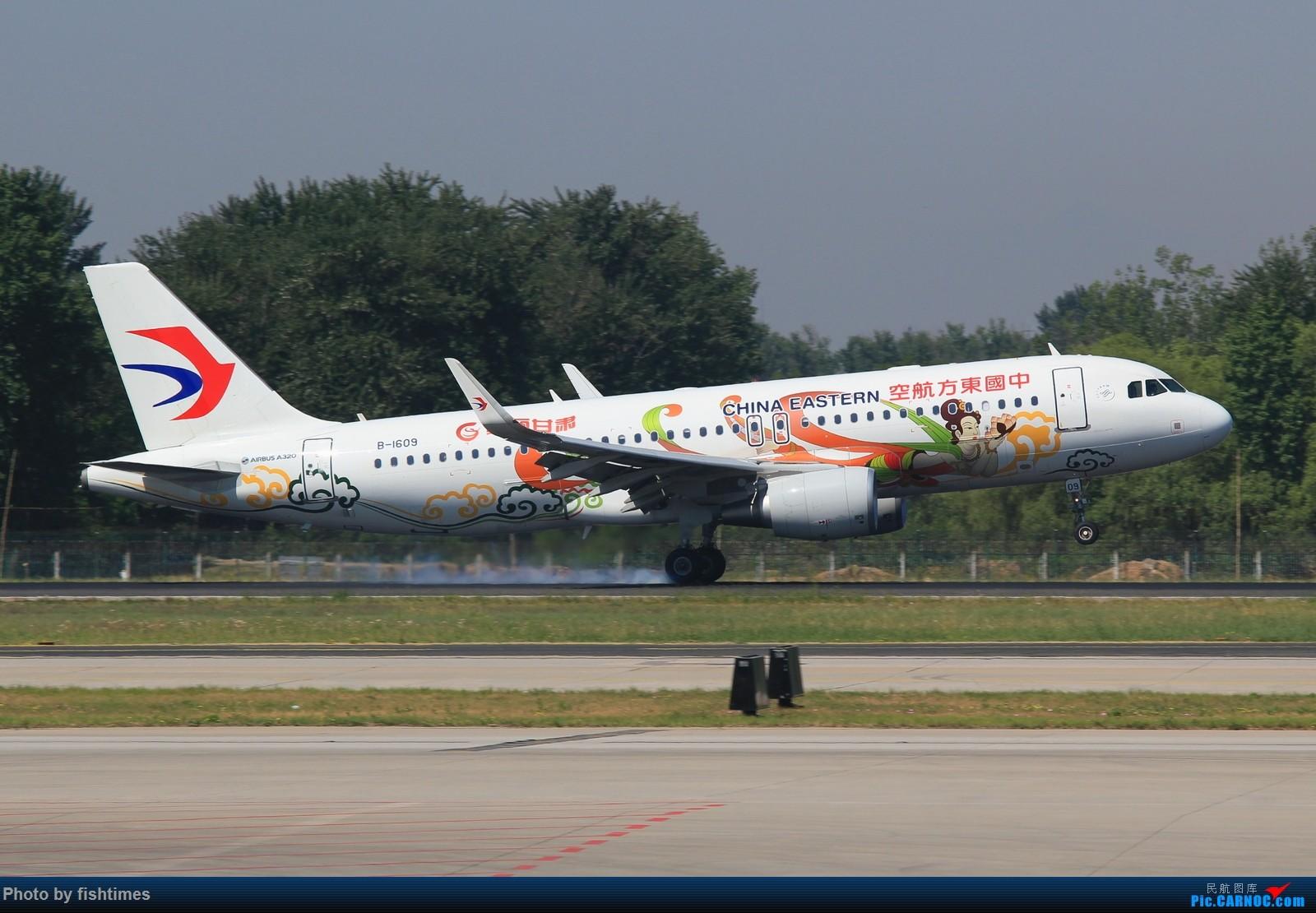 Re:[原创]【PEK】20150516_RWY36L_接地+擦烟 AIRBUS A320-200 B-1609 中国北京首都国际机场