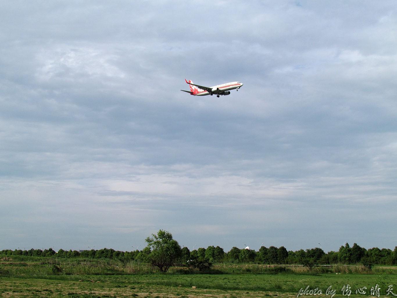 Re:[原创]PVG联盟彩绘的一天!地主、越南、AA、QF、大韩……就差星空了! AIRBUS A330-200 B-5902 中国上海浦东国际机场 中国上海浦东国际机场