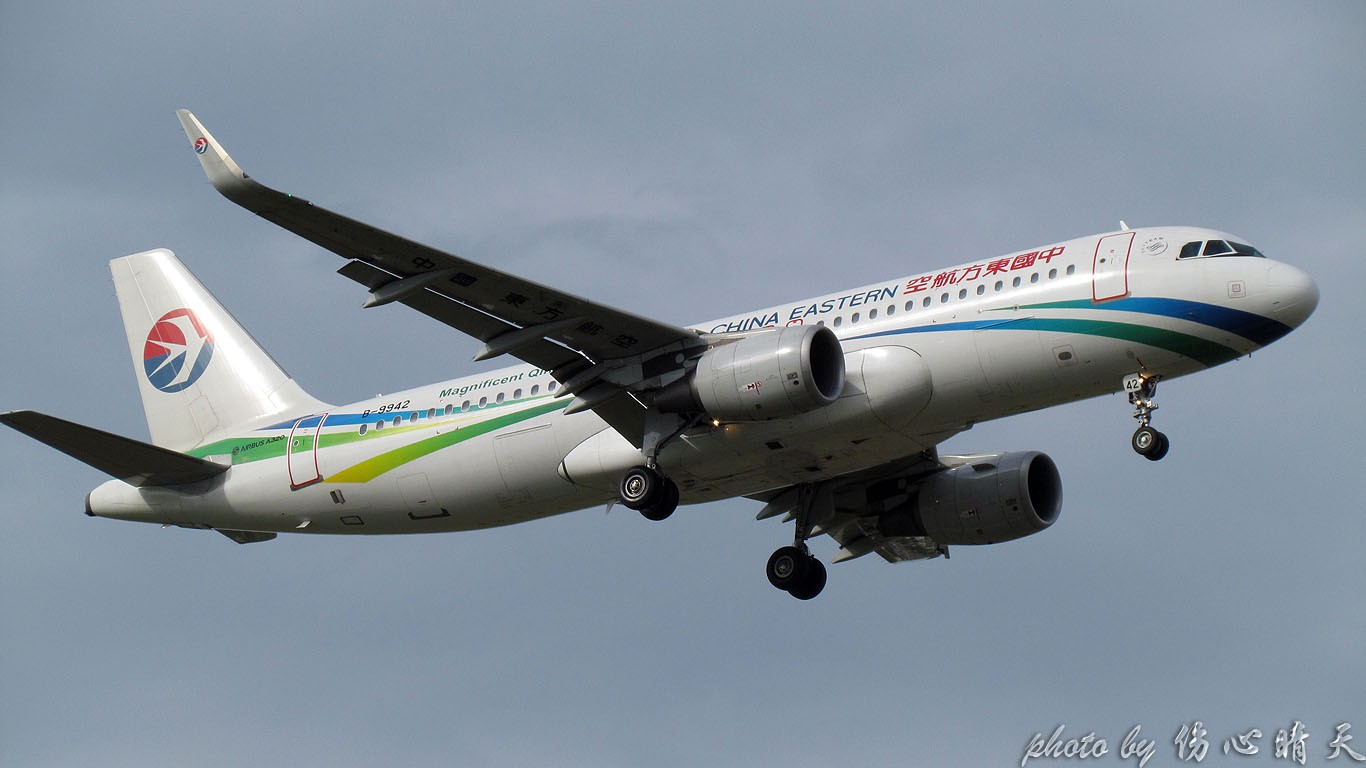 Re:[原创]PVG联盟彩绘的一天!地主、越南、AA、QF、大韩……就差星空了! AIRBUS A320-200 B-9942 中国上海浦东国际机场