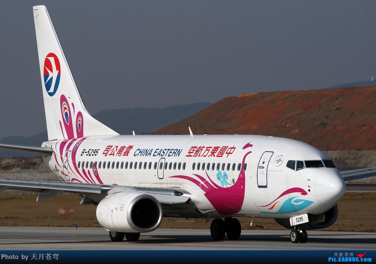 Re:[原创]【昆明飞友会】惭愧啊,只能发点老图了,长水好久没去了 BOEING 737-700 B-5295 中国昆明长水国际机场