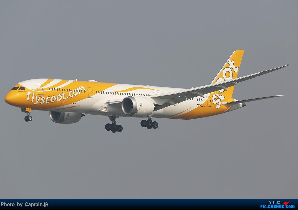 ��k��n�9ojzd��c�����f_boeing 787-9 9v-ojc 中国青岛流亭国际机场