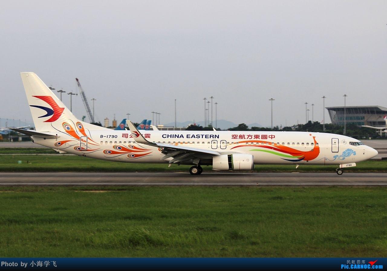 Re:[原创]2015.6.3 白云土堆拍机 BOEING 737-800 B-1790 中国广州白云国际机场