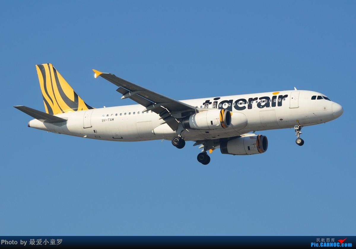 Re:[原创]去年考英语六级偷懒,在广州白云机场拍机 AIRBUS A320-200 9V-TAM
