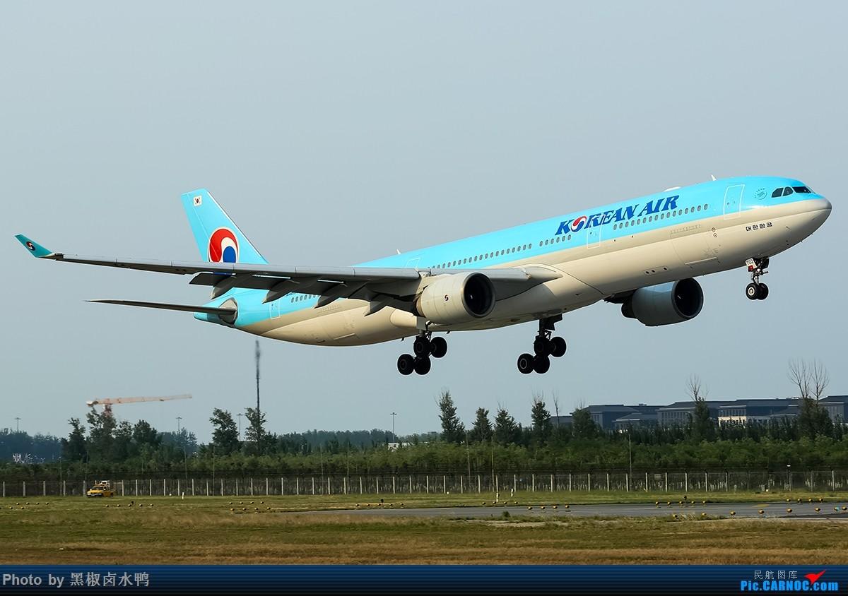 Re:[原创]我来北京是为了看飞机,拍飞机,和转机的 AIRBUS A330-300 HL7702 中国北京首都国际机场