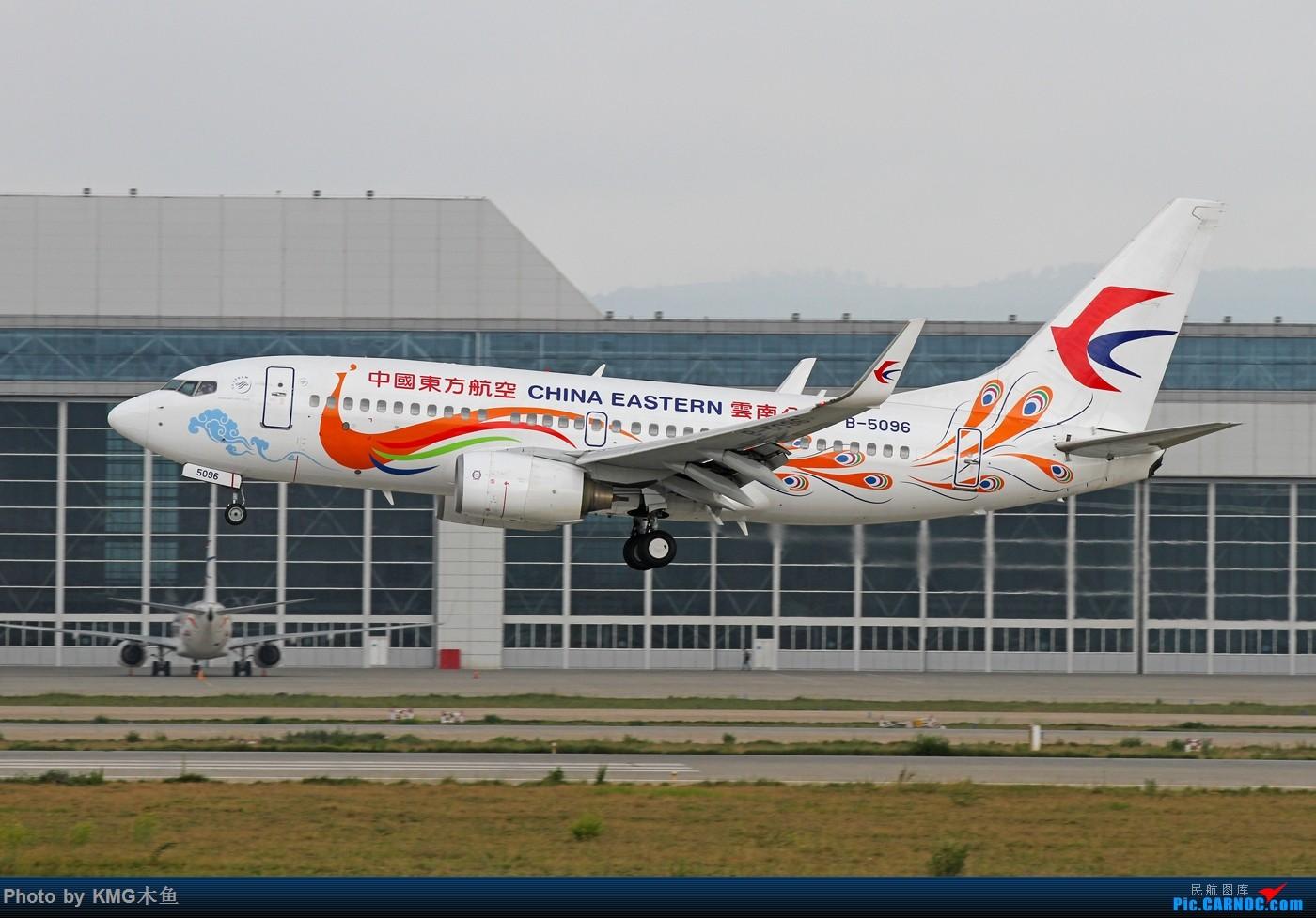 Re:[原创]【KMG】【长水机场一窝雀】2015年端午节拍摄长水机场东航云南分公司的孔雀涂装 BOEING 737-700 B-5096 中国昆明长水国际机场