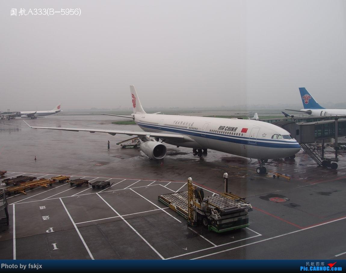越走越南 越南越美(上) AIRBUS A330-300 B-5956 中国广州白云国际机场