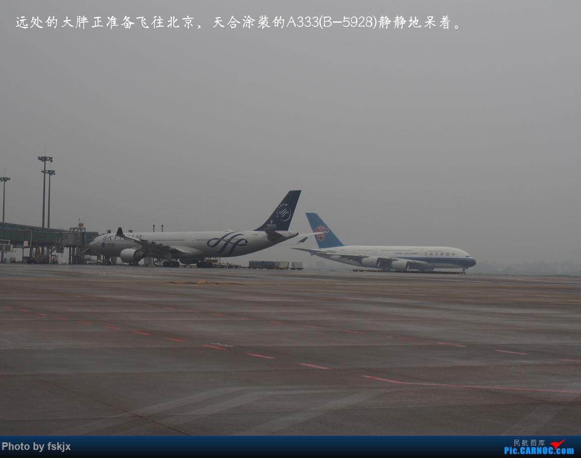 越走越南 越南越美(上) AIRBUS A330-300 B-5928 中国广州白云国际机场