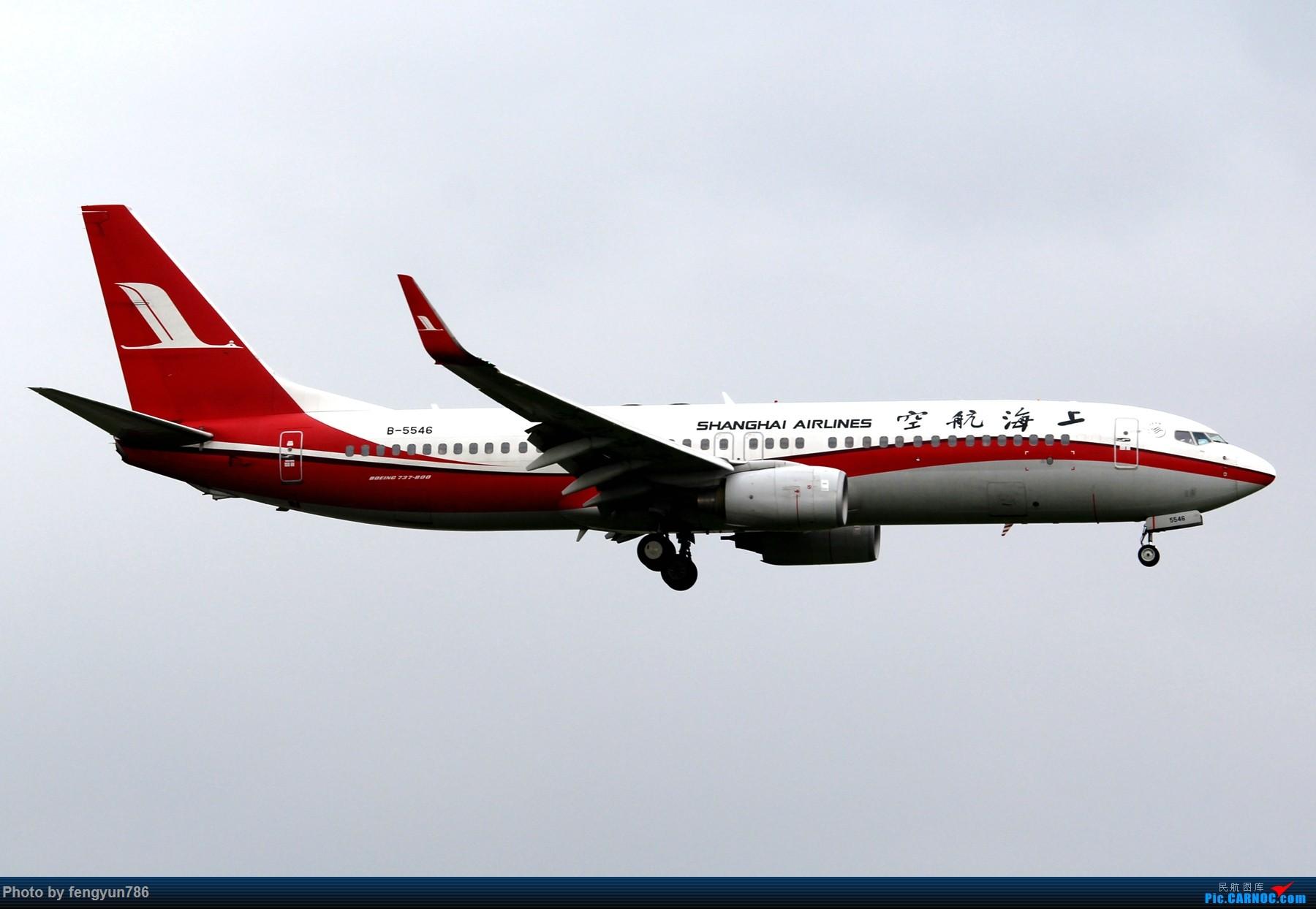 Re:[原创]新人首贴,6.18 SHA流水账 BOEING 737-800 B-5546 中国上海虹桥国际机场
