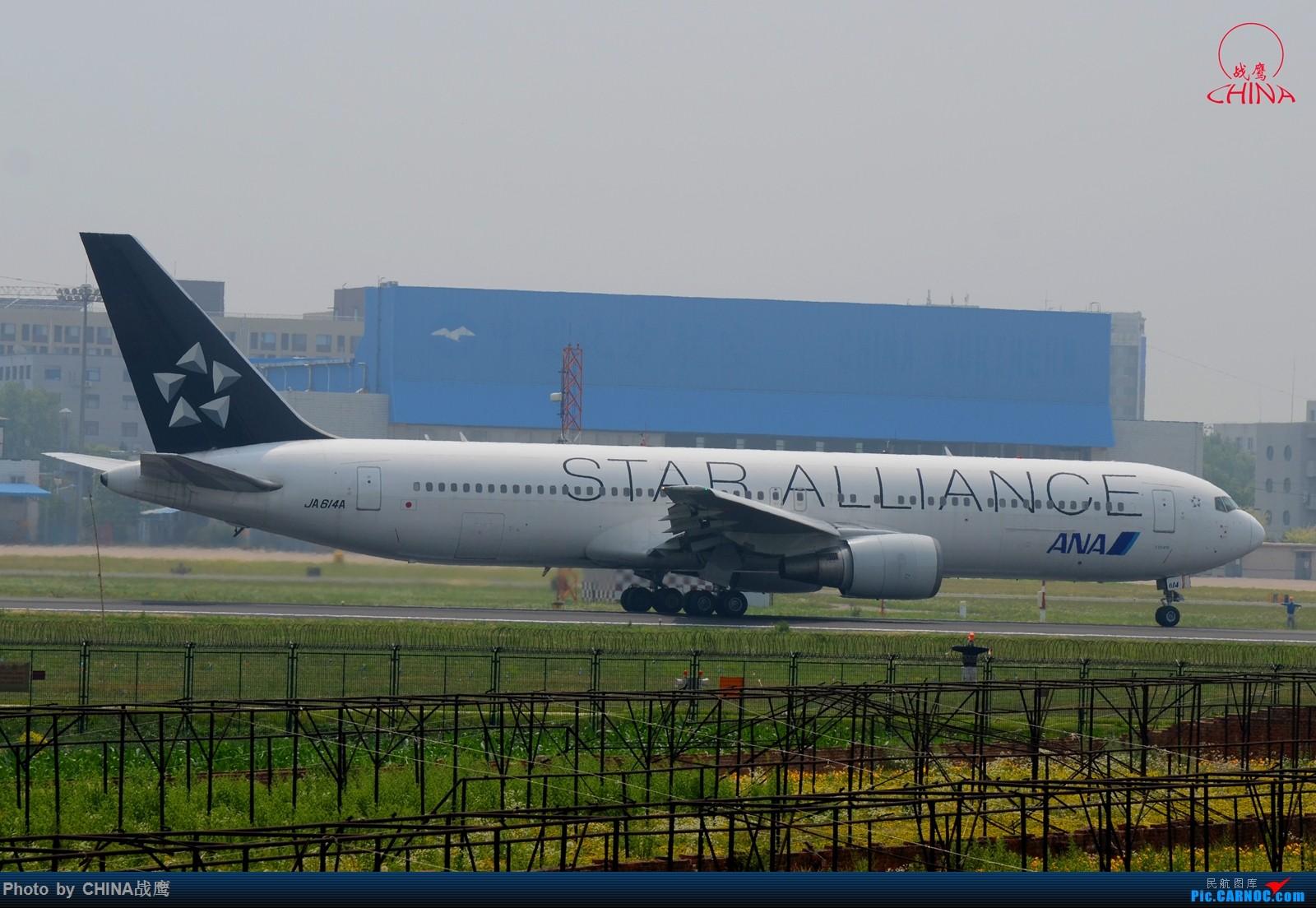 [原创][SHE]透着竹竿鸟网的缝隙拍飞机 BOEING 767-300 JA614A 中国沈阳桃仙国际机场