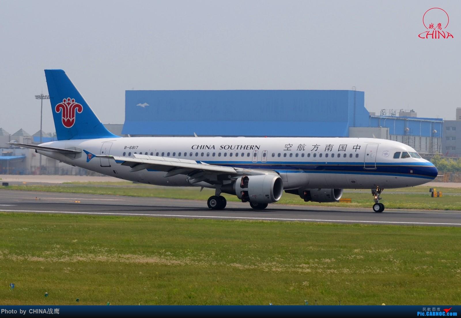 Re:[原创][SHE]透着竹竿鸟网的缝隙拍飞机 AIRBUS A320-200 B-6817 中国沈阳桃仙国际机场