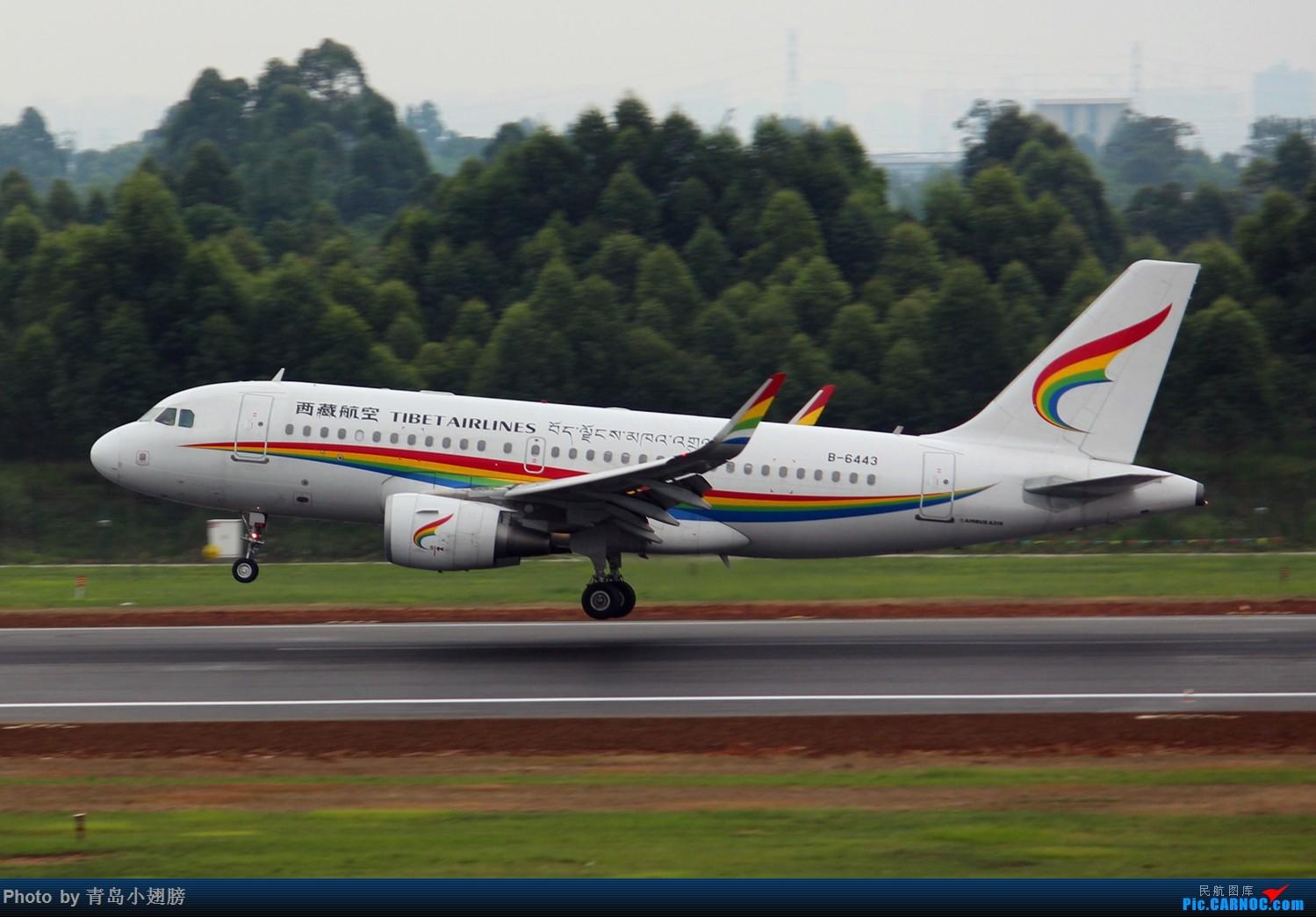 Re:[原创]【CTU】第一次成都拍机DAY-1 AIRBUS A319-100 B-6443 中国成都双流国际机场