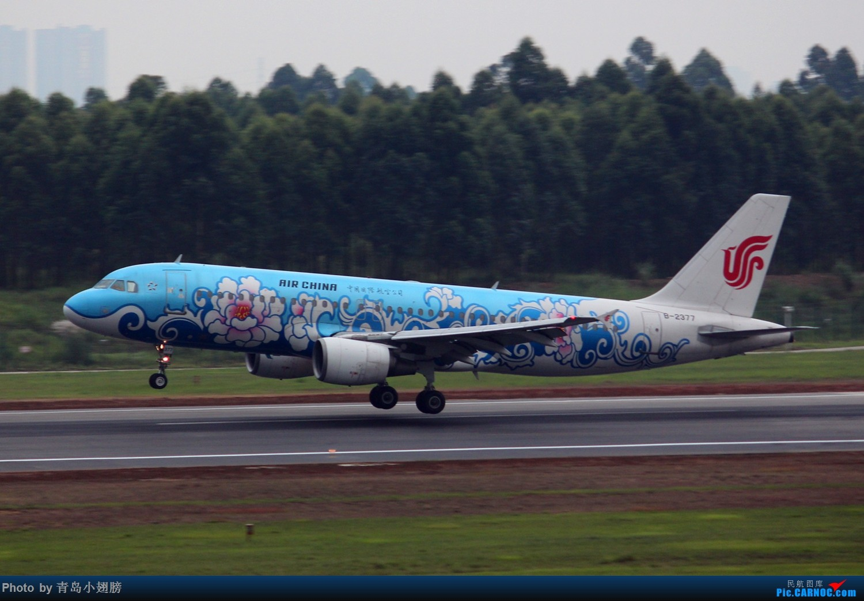 Re:[原创]【CTU】第一次成都拍机DAY-1 AIRBUS A320-200 B-2377 中国成都双流国际机场