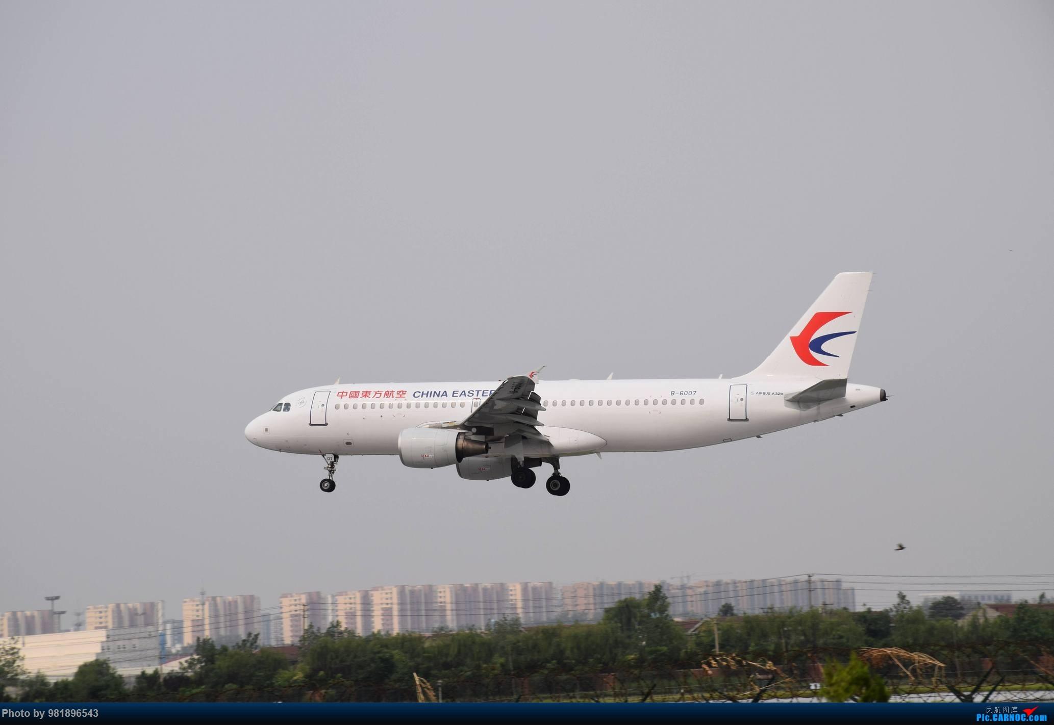 Re:[原创]【新人拍机】青岛周日的一天 AIRBUS A320-200 B-6007 中国青岛流亭国际机场