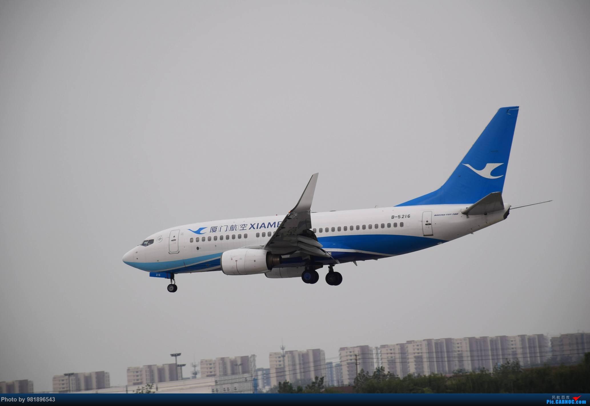 Re:[原创]【新人拍机】青岛周日的一天 BOEING 737-700 B-5216 中国青岛流亭国际机场