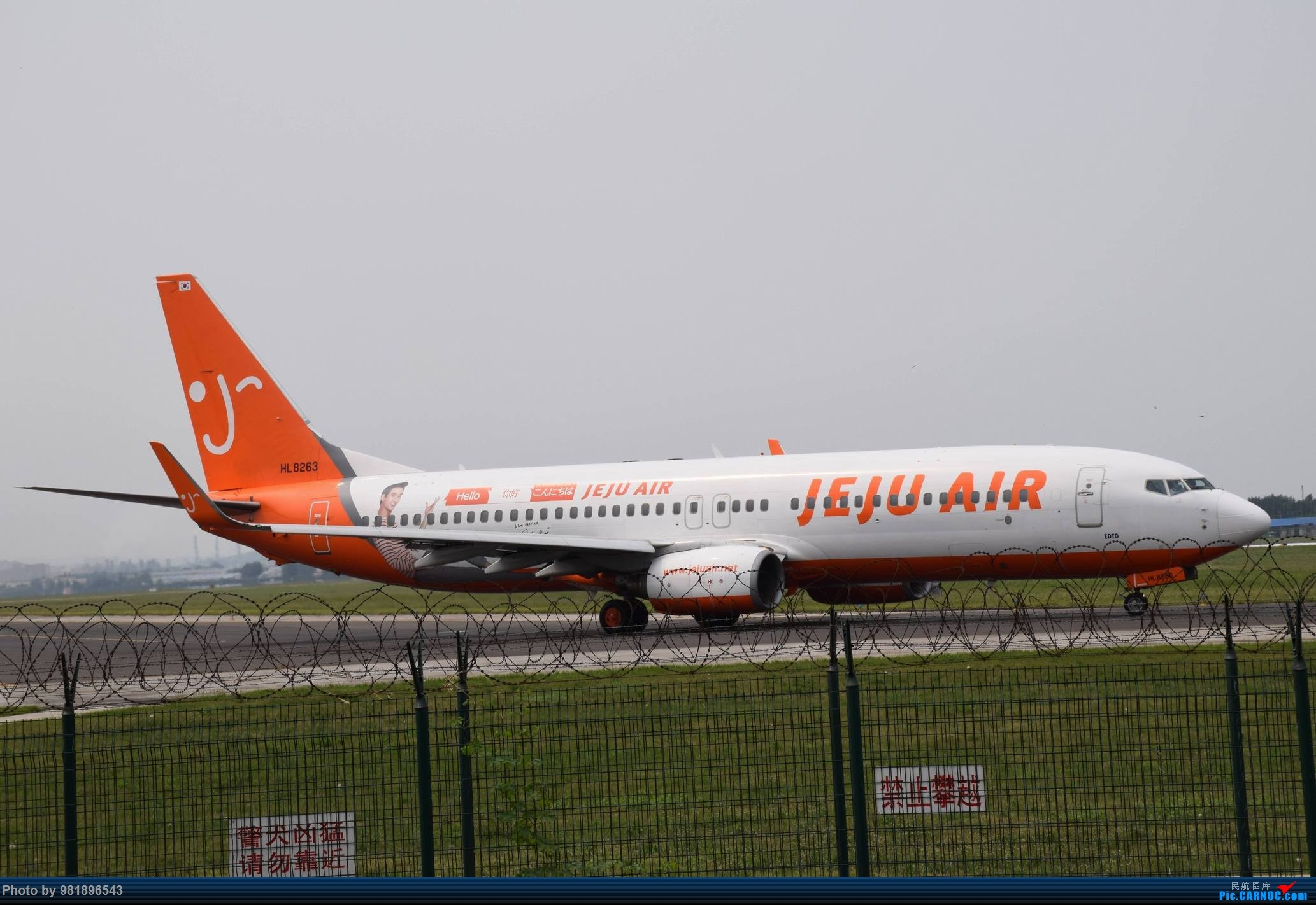 Re:[原创]【新人拍机】青岛周日的一天 BOEING 737-800 HL8263 中国青岛流亭国际机场