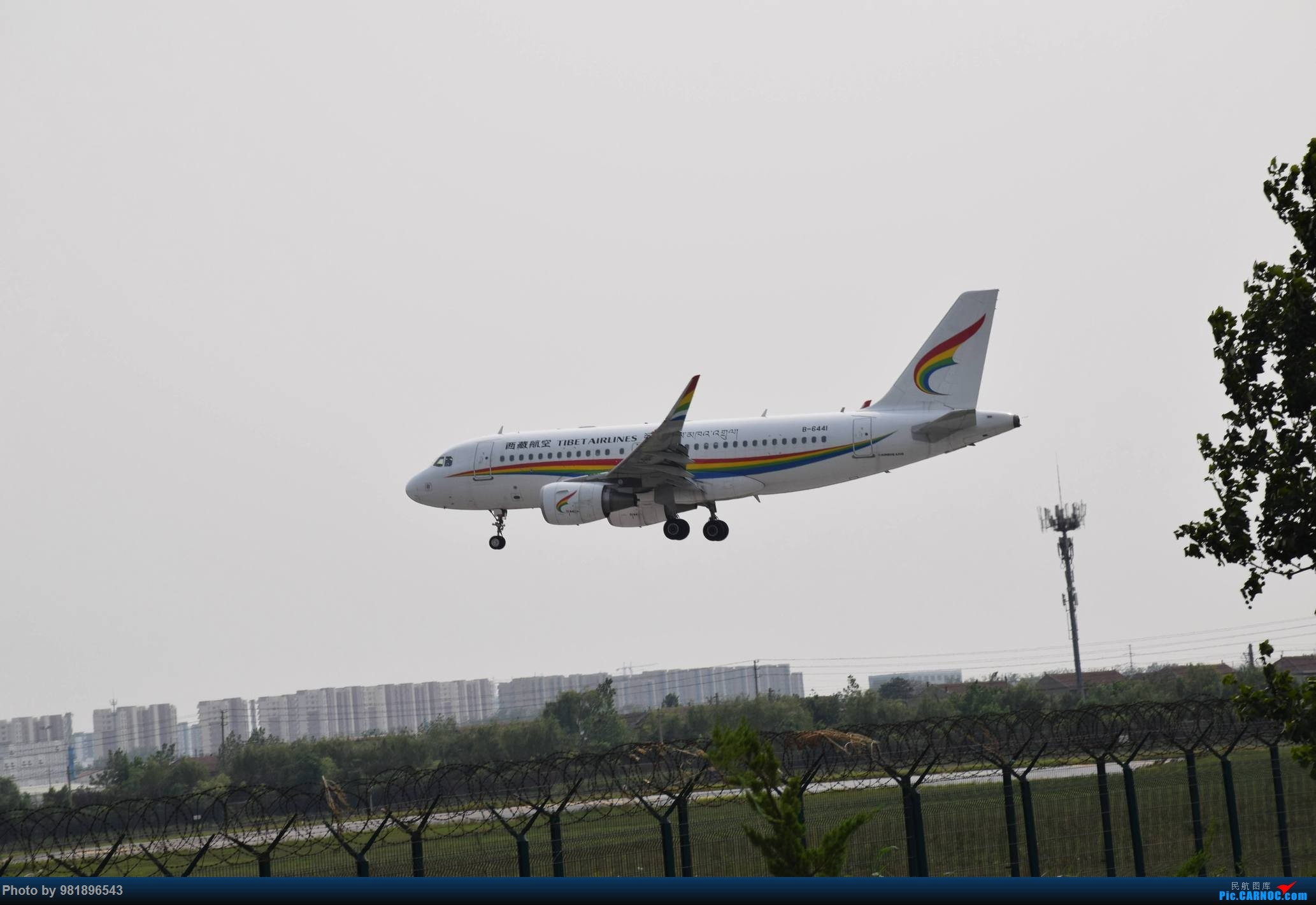 Re:[原创]【新人拍机】青岛周日的一天 AIRBUS A319-100 B-6441 中国青岛流亭国际机场