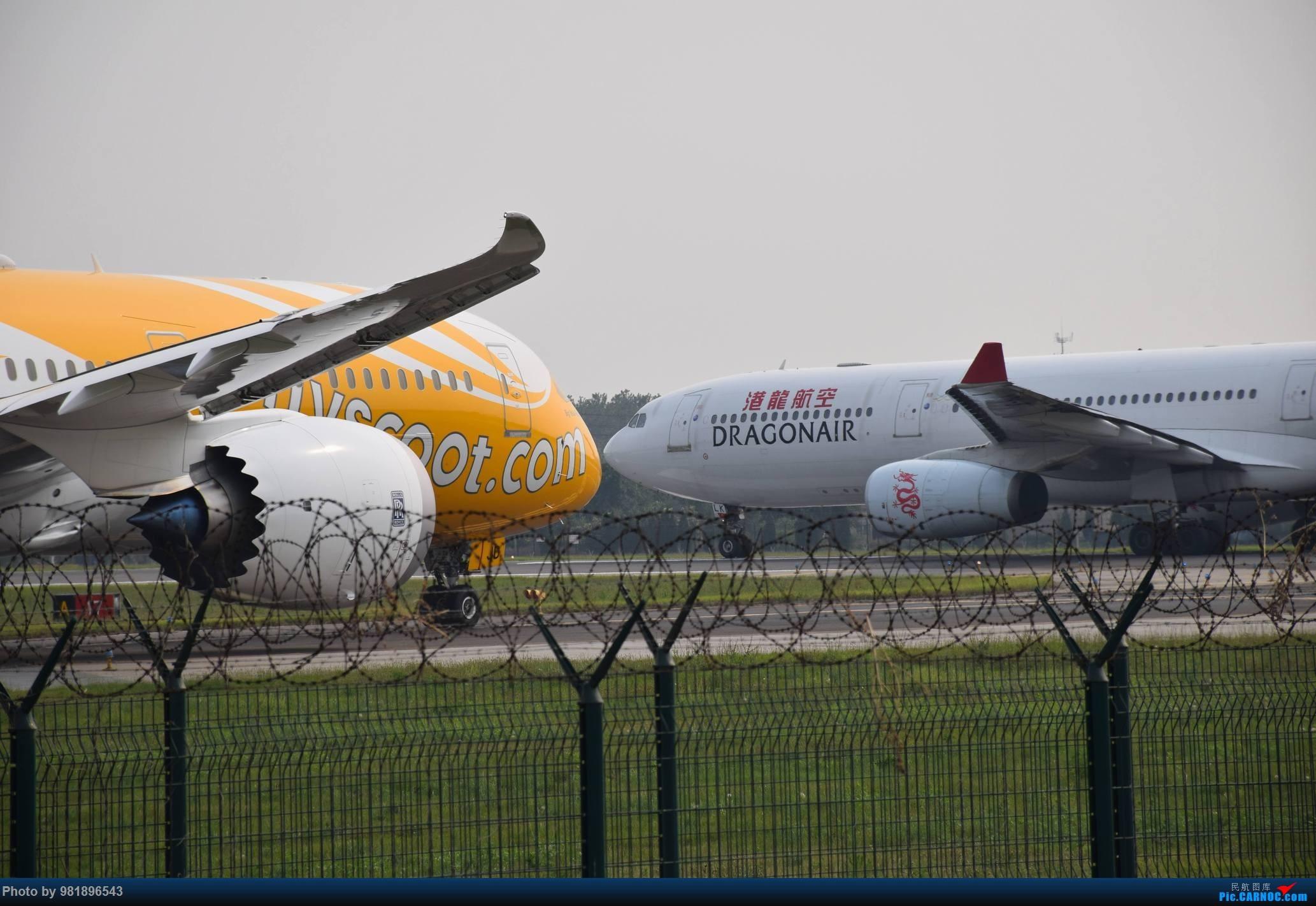 Re:[原创]【新人拍机】青岛周日的一天 BOEING 787-9 9V-OJD 中国青岛流亭国际机场