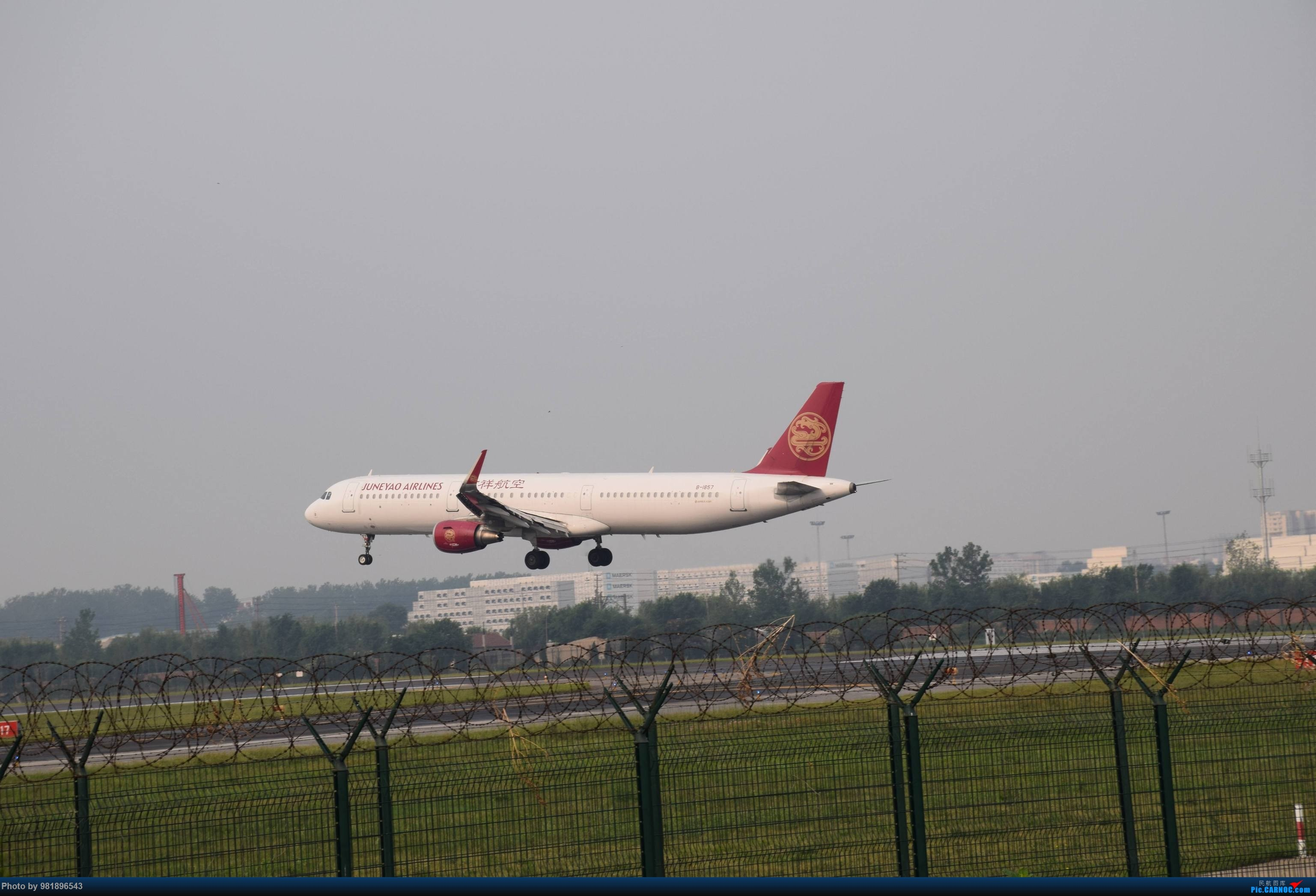 Re:[原创]【新人拍机】青岛周日的一天 AIRBUS A321-200 B-1857 中国青岛流亭国际机场