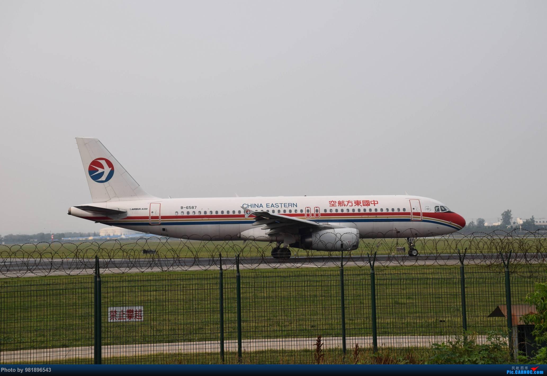 Re:[原创]【新人拍机】青岛周日的一天 AIRBUS A320-200 B-6587 中国青岛流亭国际机场