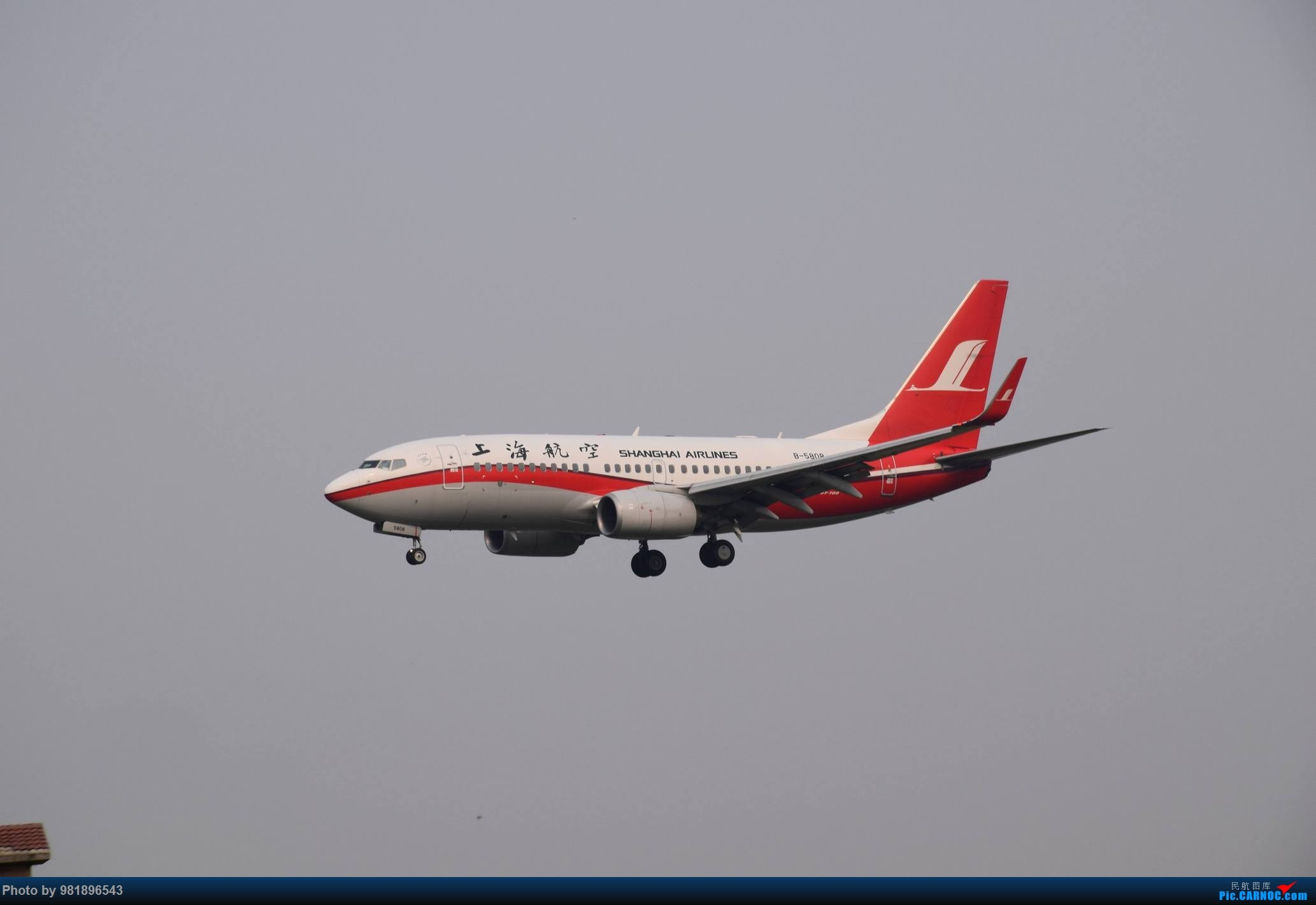 Re:[原创]【新人拍机】青岛周日的一天 BOEING 737-700 B-5808 中国青岛流亭国际机场